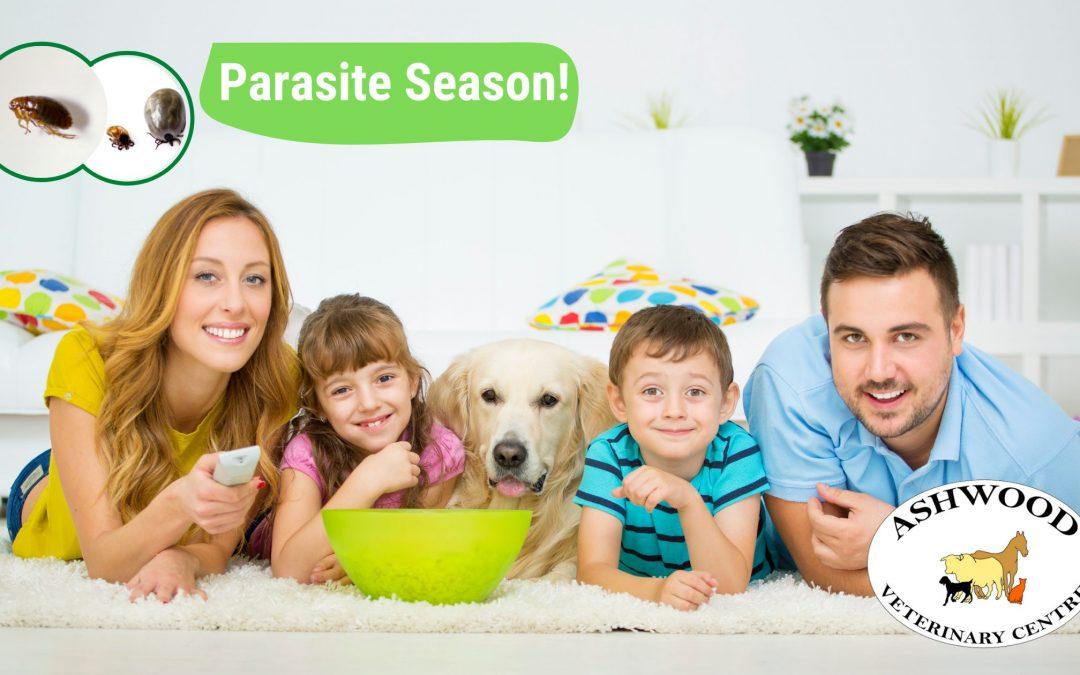 Parasite Season!